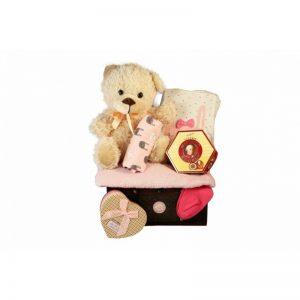 Baby Deep Pink Gift Basket