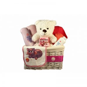 Classic New Born Girl Gift Basket
